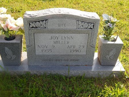 MILLER, JOY LYNN - Knox County, Tennessee | JOY LYNN MILLER - Tennessee Gravestone Photos