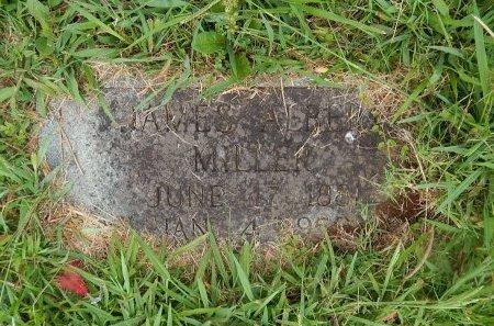 MILLER, JAMES ALBERT - Knox County, Tennessee | JAMES ALBERT MILLER - Tennessee Gravestone Photos