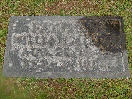MILLER, WILLIAM - Knox County, Tennessee | WILLIAM MILLER - Tennessee Gravestone Photos