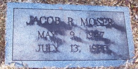 MOSER, JACOB R. - Knox County, Tennessee | JACOB R. MOSER - Tennessee Gravestone Photos