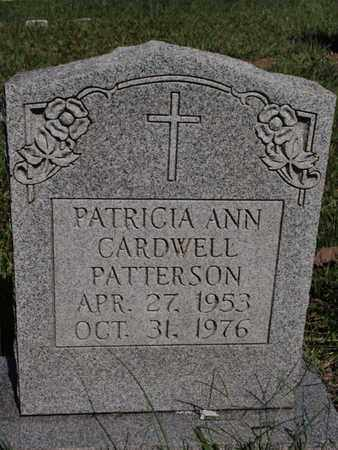 PATTERSON, PATRICIA ANN - Knox County, Tennessee   PATRICIA ANN PATTERSON - Tennessee Gravestone Photos