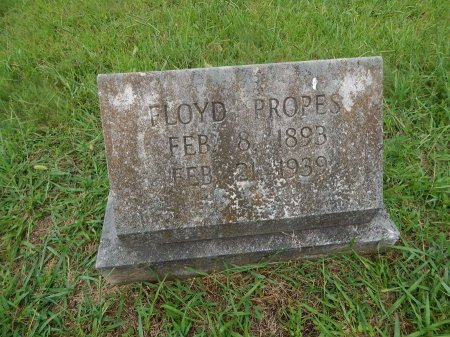 PROPES, FLOYD - Knox County, Tennessee | FLOYD PROPES - Tennessee Gravestone Photos