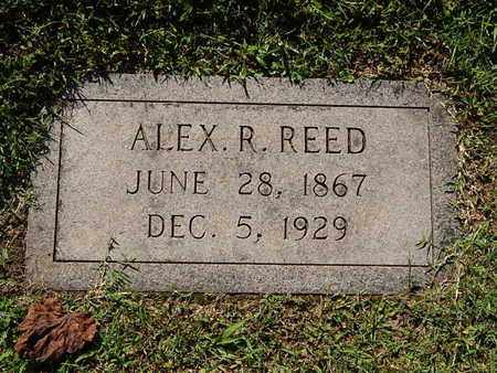 REED, ALEX R - Knox County, Tennessee | ALEX R REED - Tennessee Gravestone Photos