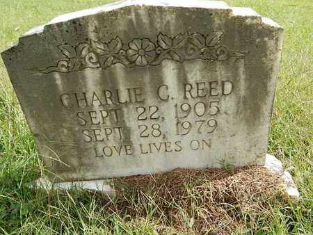 REED, CHARLIE C - Knox County, Tennessee | CHARLIE C REED - Tennessee Gravestone Photos