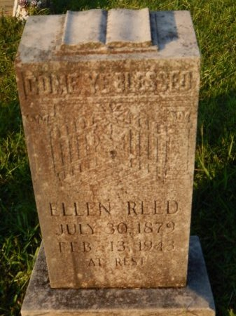 REED, ELLEN - Knox County, Tennessee | ELLEN REED - Tennessee Gravestone Photos