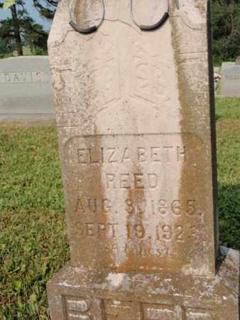 REED, ELIZABETH - Knox County, Tennessee | ELIZABETH REED - Tennessee Gravestone Photos