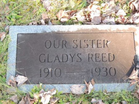 REED, GLADYS - Knox County, Tennessee   GLADYS REED - Tennessee Gravestone Photos