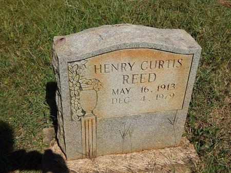REED, HENRY CURTIS - Knox County, Tennessee | HENRY CURTIS REED - Tennessee Gravestone Photos