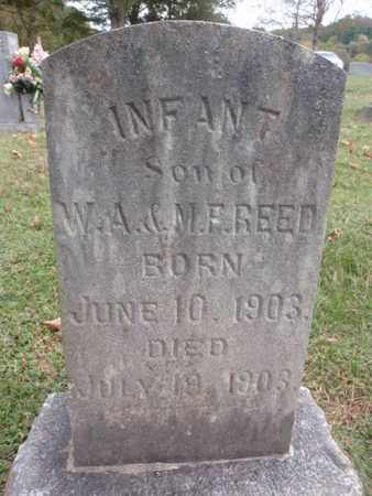 REED, INFANT - Knox County, Tennessee | INFANT REED - Tennessee Gravestone Photos