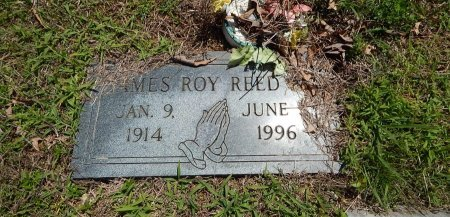 REED, JAMES ROY - Knox County, Tennessee   JAMES ROY REED - Tennessee Gravestone Photos