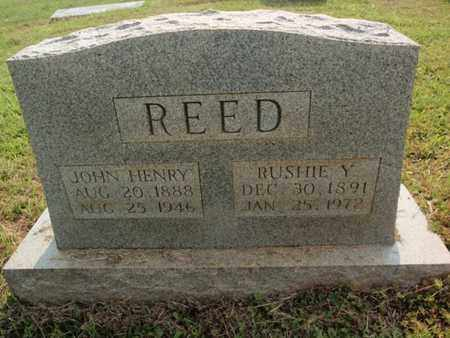 REED, RUSHIE - Knox County, Tennessee | RUSHIE REED - Tennessee Gravestone Photos