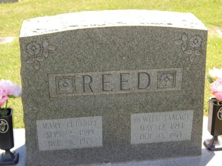 REED, DEWITT TAMAGE - Knox County, Tennessee | DEWITT TAMAGE REED - Tennessee Gravestone Photos