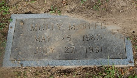 REED, MOLLY M - Knox County, Tennessee | MOLLY M REED - Tennessee Gravestone Photos