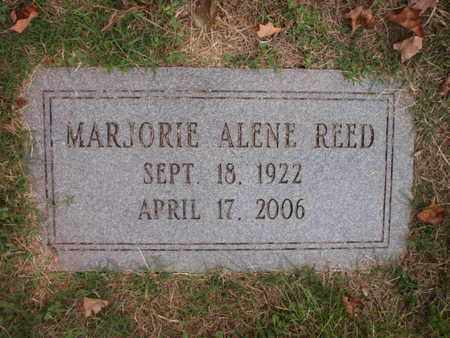 REED, MARJORIE ALENE - Knox County, Tennessee | MARJORIE ALENE REED - Tennessee Gravestone Photos