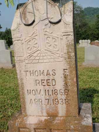 REED, THOMAS F - Knox County, Tennessee | THOMAS F REED - Tennessee Gravestone Photos