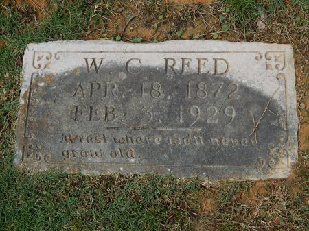 REED, W C - Knox County, Tennessee   W C REED - Tennessee Gravestone Photos
