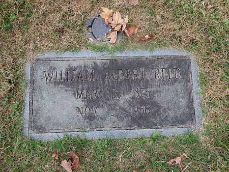 REED, WILLIAM ALBERT - Knox County, Tennessee | WILLIAM ALBERT REED - Tennessee Gravestone Photos