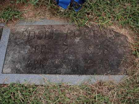 ROGERS, EDSEL - Knox County, Tennessee | EDSEL ROGERS - Tennessee Gravestone Photos