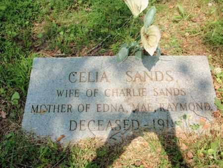 SANDS, CELIA - Knox County, Tennessee   CELIA SANDS - Tennessee Gravestone Photos