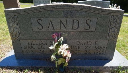 SANDS, DAVID E - Knox County, Tennessee | DAVID E SANDS - Tennessee Gravestone Photos