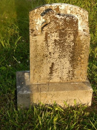 SMITH, CARRIE LOU - Knox County, Tennessee | CARRIE LOU SMITH - Tennessee Gravestone Photos