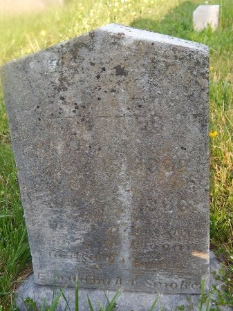 TROTTER, L JEANETTE - Knox County, Tennessee | L JEANETTE TROTTER - Tennessee Gravestone Photos