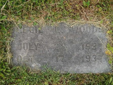 WOODS, CECIL L - Knox County, Tennessee | CECIL L WOODS - Tennessee Gravestone Photos