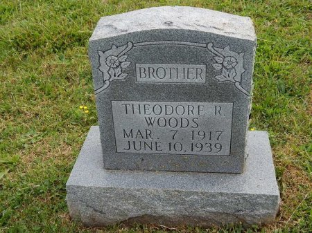 WOODS, THEODORE R - Knox County, Tennessee | THEODORE R WOODS - Tennessee Gravestone Photos