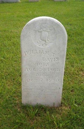 DAVIS, WILLIAM T. - Lauderdale County, Tennessee | WILLIAM T. DAVIS - Tennessee Gravestone Photos