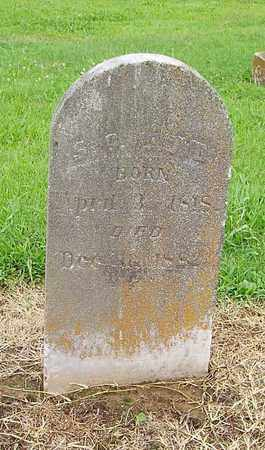 LLOYD, S - Lauderdale County, Tennessee | S LLOYD - Tennessee Gravestone Photos