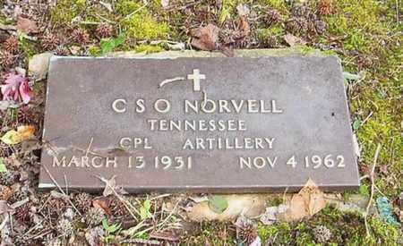 NORVELL  (VETERAN CSA), C. S. O. - Lauderdale County, Tennessee | C. S. O. NORVELL  (VETERAN CSA) - Tennessee Gravestone Photos