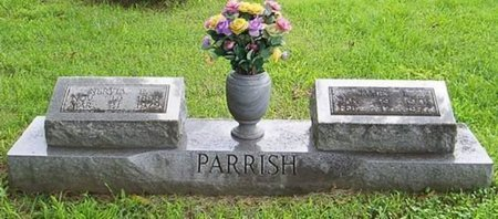 PARRISH, NERVIA EMALINE - Lauderdale County, Tennessee | NERVIA EMALINE PARRISH - Tennessee Gravestone Photos