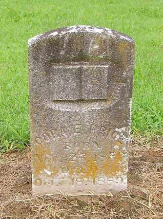 PRICE, CORA E - Lauderdale County, Tennessee | CORA E PRICE - Tennessee Gravestone Photos