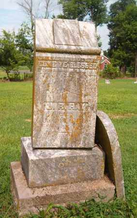 RAY, J R - Lauderdale County, Tennessee | J R RAY - Tennessee Gravestone Photos
