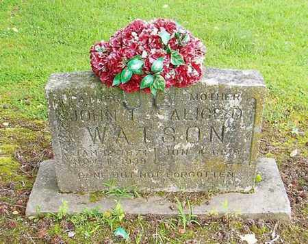 WATSON, ALICE D - Lauderdale County, Tennessee | ALICE D WATSON - Tennessee Gravestone Photos