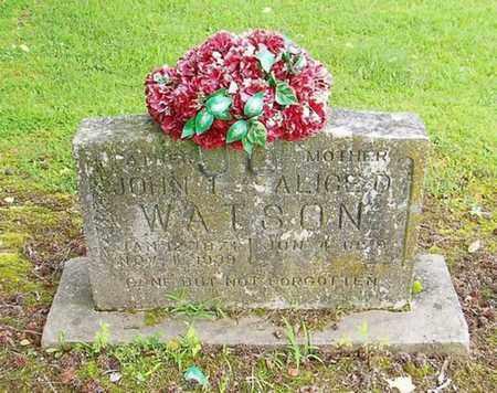 WATSON, JOHN T - Lauderdale County, Tennessee | JOHN T WATSON - Tennessee Gravestone Photos