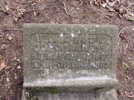 BAILEY, JENNIE - Lawrence County, Tennessee | JENNIE BAILEY - Tennessee Gravestone Photos
