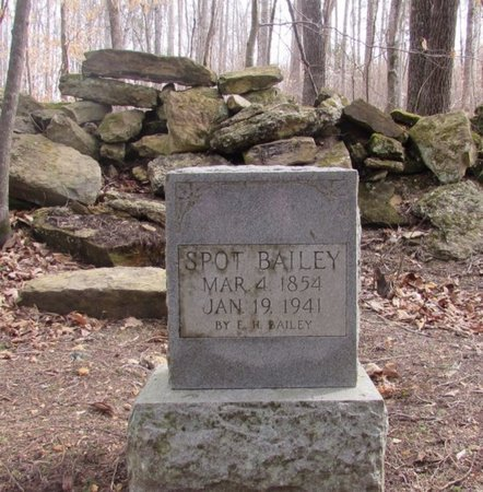 BAILEY, SPOT - Lawrence County, Tennessee | SPOT BAILEY - Tennessee Gravestone Photos
