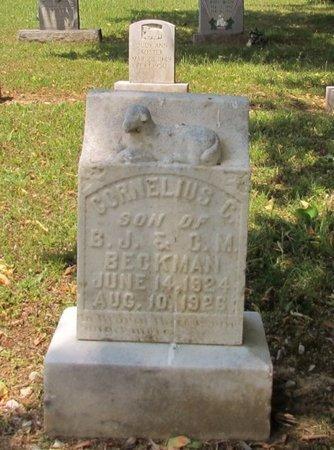 BECKMAN, CORNELIUS C. - Lawrence County, Tennessee | CORNELIUS C. BECKMAN - Tennessee Gravestone Photos