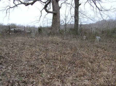 *BOSWELL OVERVIEW,  - Lawrence County, Tennessee    *BOSWELL OVERVIEW - Tennessee Gravestone Photos