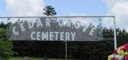 CEMETERY, CEDAR GROVE - Lawrence County, Tennessee | CEDAR GROVE CEMETERY - Tennessee Gravestone Photos