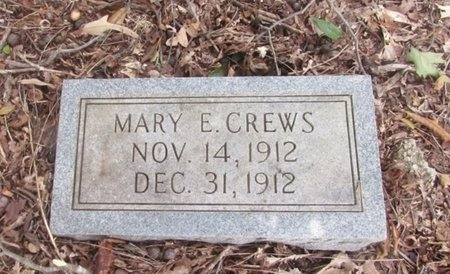 CREWS, MARY E. - Lawrence County, Tennessee | MARY E. CREWS - Tennessee Gravestone Photos
