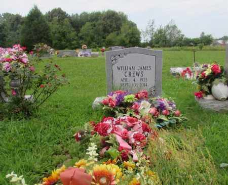 CREWS, WILLIAM JAMES - Lawrence County, Tennessee | WILLIAM JAMES CREWS - Tennessee Gravestone Photos
