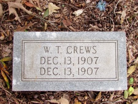 CREWS, W. T. - Lawrence County, Tennessee   W. T. CREWS - Tennessee Gravestone Photos