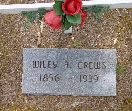 CREWS, WILEY A. - Lawrence County, Tennessee | WILEY A. CREWS - Tennessee Gravestone Photos