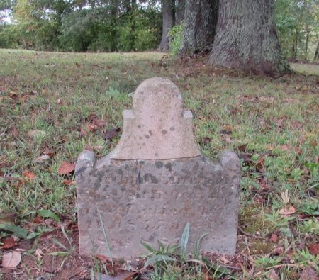 EMERSON, MARTHA - Lawrence County, Tennessee | MARTHA EMERSON - Tennessee Gravestone Photos