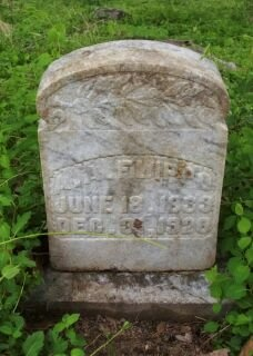 FLIPPO, ASBERRY A. - Lawrence County, Tennessee | ASBERRY A. FLIPPO - Tennessee Gravestone Photos
