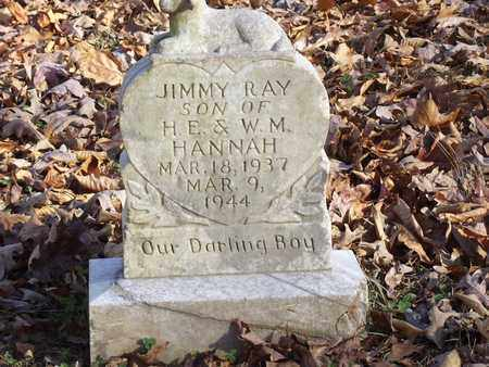 HANNAH, JIMMY RAY - Lawrence County, Tennessee   JIMMY RAY HANNAH - Tennessee Gravestone Photos