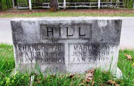 HILL, CHARLOTTIE - Lawrence County, Tennessee   CHARLOTTIE HILL - Tennessee Gravestone Photos