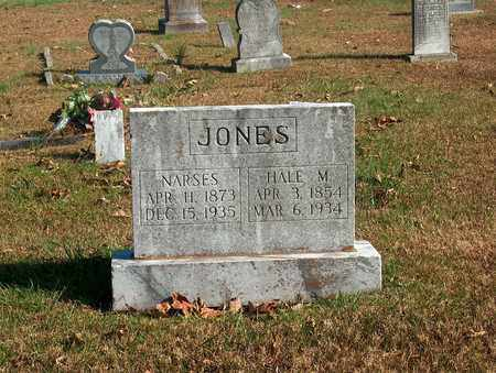 JONES, NARSES - Lawrence County, Tennessee | NARSES JONES - Tennessee Gravestone Photos